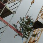 SF-Bau-Richtbaum-Richtfest in Donzdorf-Neubeu Verwaltungsgebäude