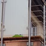 Schlosserarbeiten-Metallbauarbeiten-Balkongeländer-Sichtschutz-Stahlbau-Faurndau-Schlosser- und Metallbauarbeiten